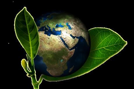 יישוב סכסוכים בנושאי איכות והגנת הסביבה